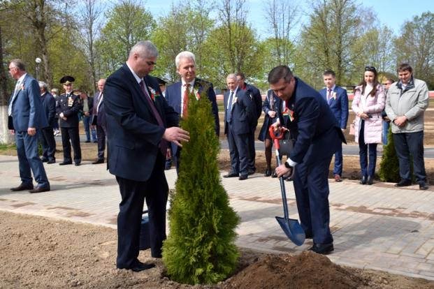 """Посадка аллеи туй в парке отдыха """"Липовая роща"""" в г.Белыничи 9 мая 2020 г."""